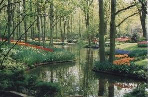 pond at Keukenhof gardens